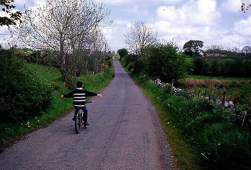 Irish Genetic Communities