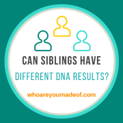 Can Siblings Have Different Ancestry DNA Results?