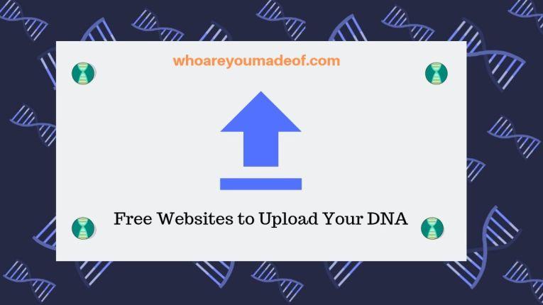 Free Websites to Upload Your DNA