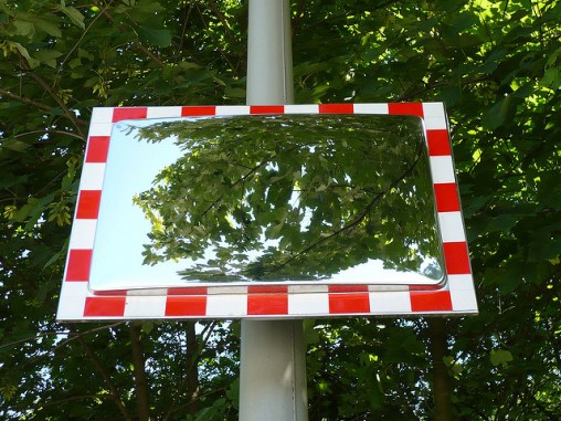 What is a mirror tree?