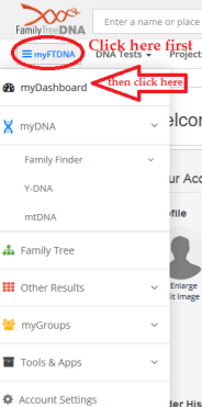 How to access DNA results dashboard FTDNA