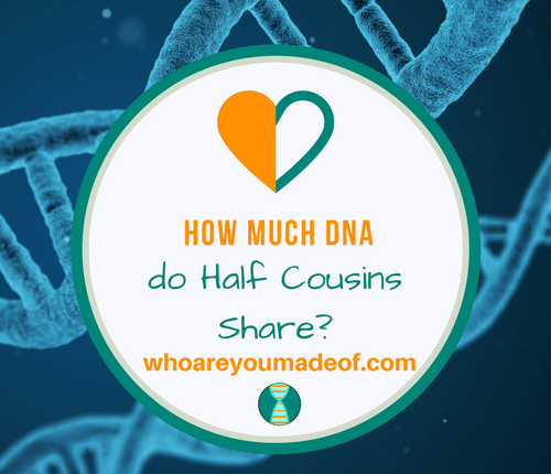 How Much DNA do Half Cousins Share_