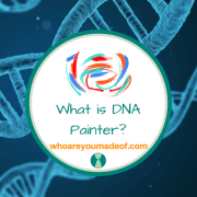 What is DNA Painter?