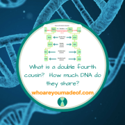 What is a double fourth cousin?  How much DNA do they share?