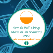 How do Half-Siblings Show Up on Ancestry DNA?