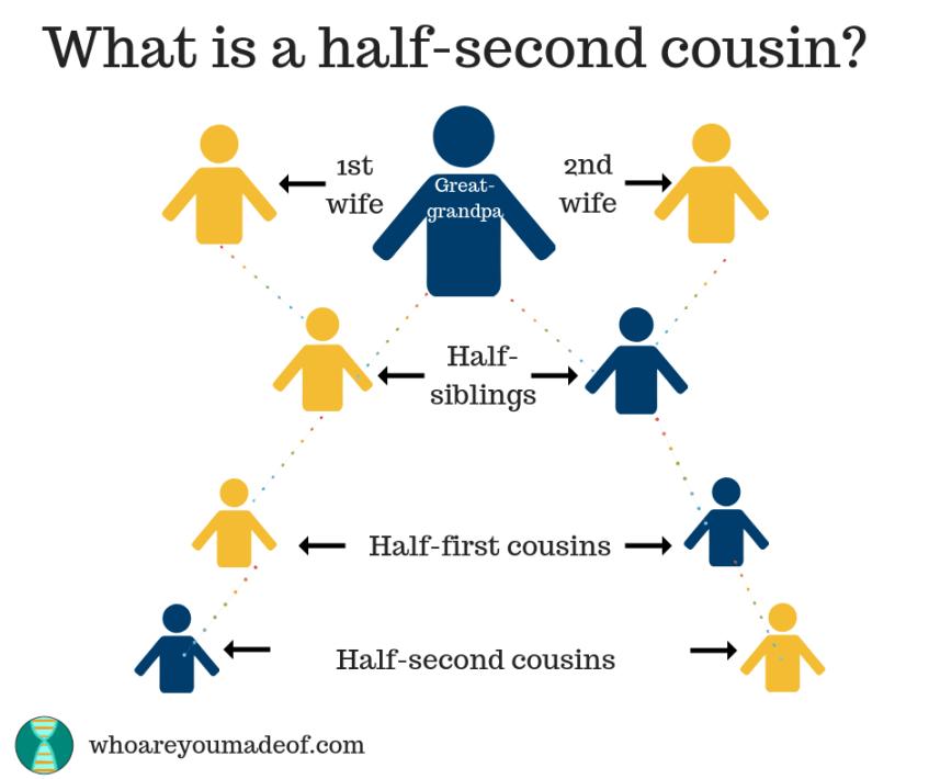 A chart explaining half-second cousins.