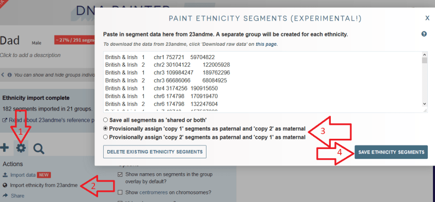 How to import ethnicity segments into DNA Painter