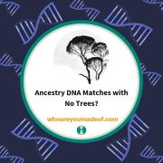 Ancestry DNA Matches with No Trees?