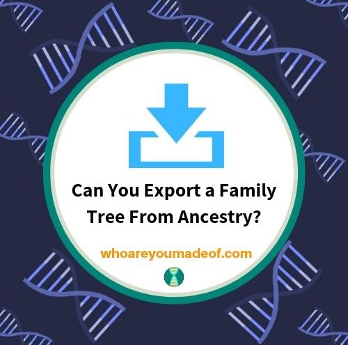 Can You Export a Family Tree From Ancestry_