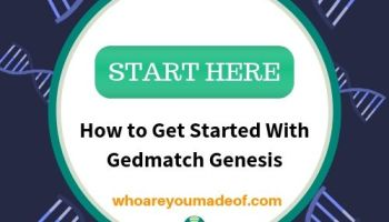 Gedmatch Genesis Tutorial for Beginners - Who are You Made Of?