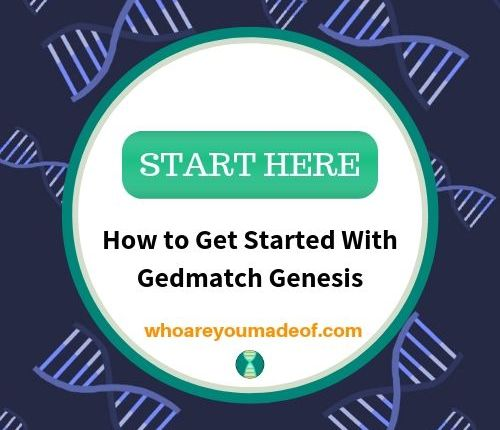 How to Get Started With Gedmatch Genesis