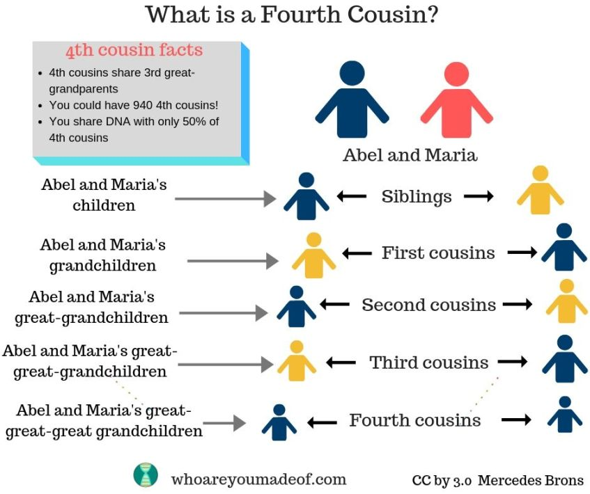 """A chart depicting the answer to """"what is a fourth cousin?""""  This is includes an example of a fourth cousin"""