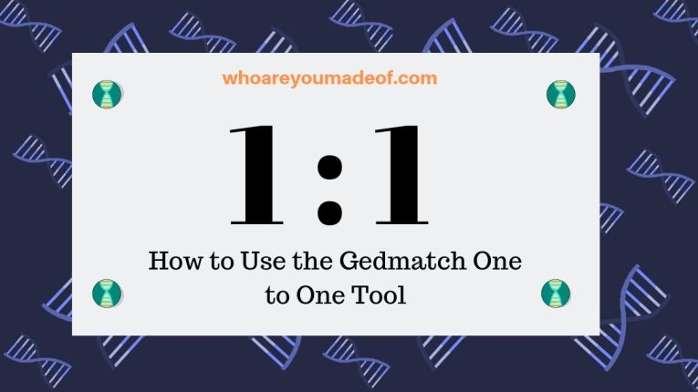 How to Use the Gedmatch One to One Tool