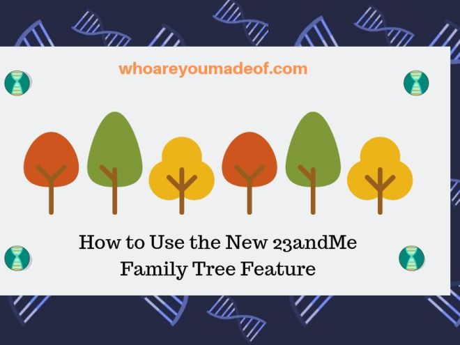 How to Use the New 23andMe Family Tree Feature