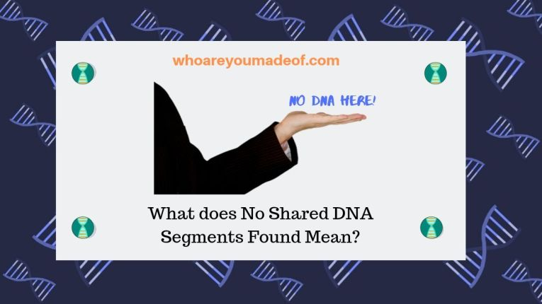 What does No Shared DNA Segments Found Mean_