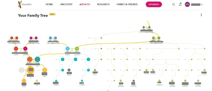 how-to-use-the-23andme-family-tree-feature