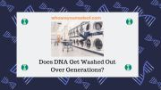 Does DNA Get Washed Out Over Generations?
