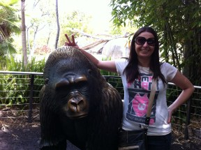 "Me giving a gorilla the old ""rabbit ears"". Don't worry, it's not real."