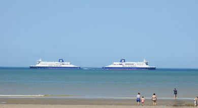 dfds7_IMG_4249