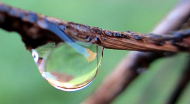 droplets: rusty - merged decay and beauty