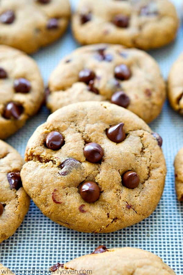 Best-Ever-Chocolate-Chip-Cookies9