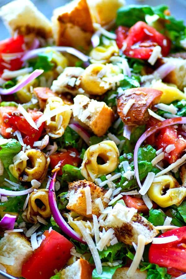 Cheese-filled tortellini and toasty french bread cubes star in this INSANELY-loaded tortellini panzanella salad! Drizzle it all with a balsamic vinaigrette and you've just found your favorite salad.