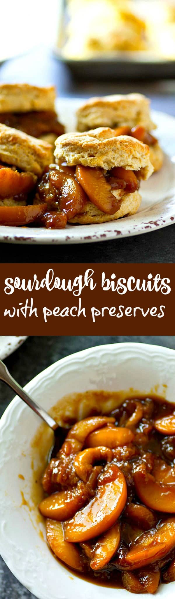 Flaky, insanely-flavorful sourdough biscuits are a match made in heaven with juicy fresh peach preserves! Summer in a biscuit.