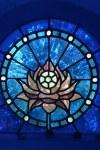 Lotus Window