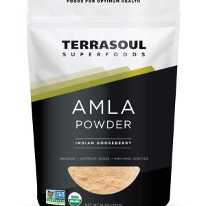 Terrasoul Superfoods Organic Amla Berry Powder (Amalaki), 16 Oz - Rich in Antioxidant Vitamin C | Supports Immunity