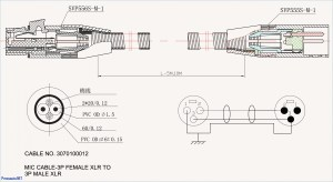 Wiring Diagram for Cat6 Connectors Collection