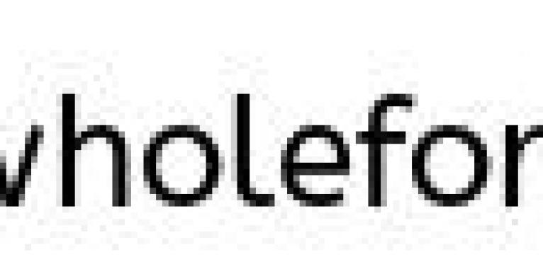 install-now-wordpress