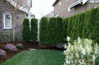 32 beautiful small front yard landscaping ideas