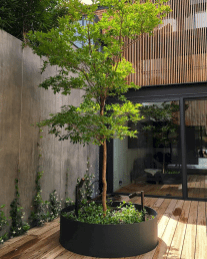 65 beautiful small front yard landscaping ideas