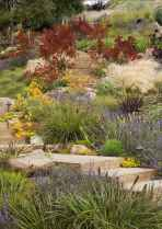 24 affordable low maintenance front yard landscaping ideas