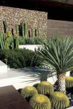 24 simple beautiful small front yard landscaping ideas