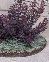 30 affordable low maintenance front yard landscaping ideas