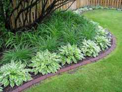 41 affordable low maintenance front yard landscaping ideas