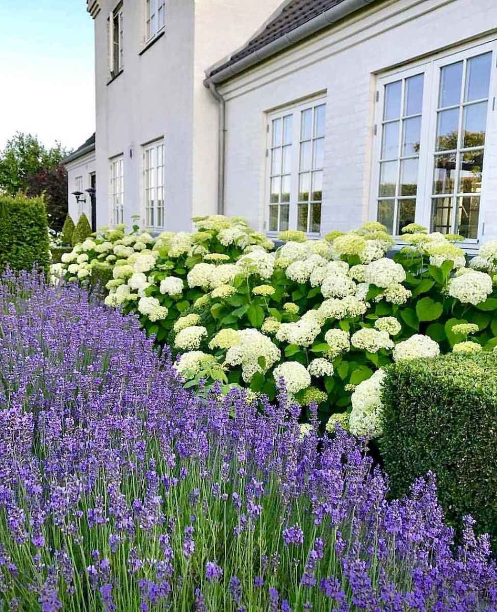 14 stunning small cottage garden ideas for backyard landscaping