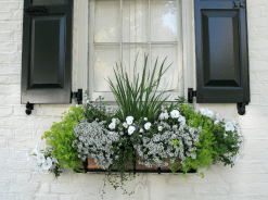 62 beautiful curb appeal spring garden ideas