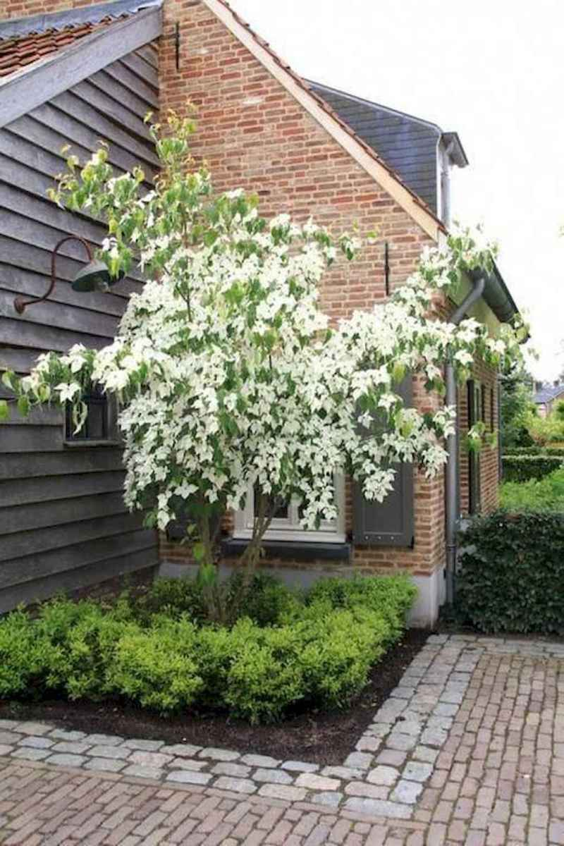 68 stunning small cottage garden ideas for backyard landscaping