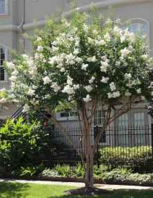 69 beautiful curb appeal spring garden ideas