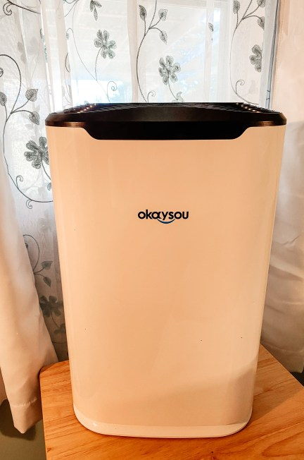 okaysou air purifier review