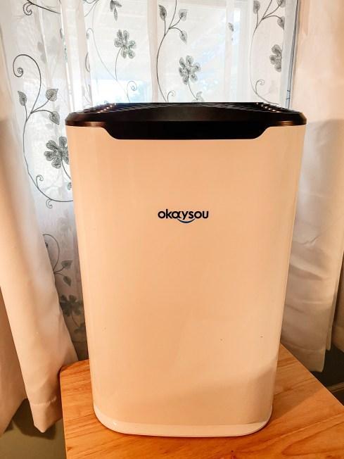 okaysou airmax 8L air purifier review