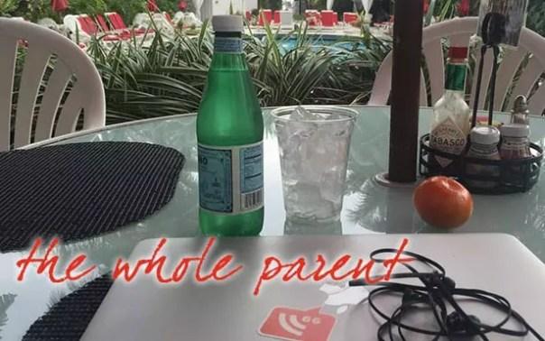 WHOLE-2015-writer