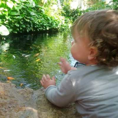 Birth & Parenting Series (23): Toddler Talk from a Mom of a Big Talkin' Toddler