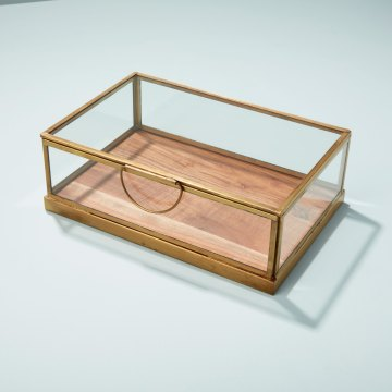 Glass Display Case with Wood Base, Small