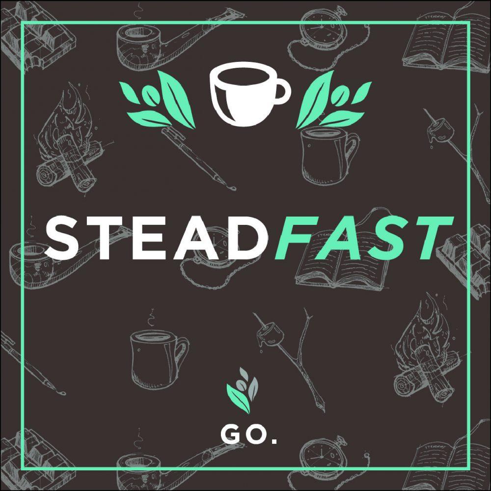 Steadfast (Dark Roast) – 5lb Bag