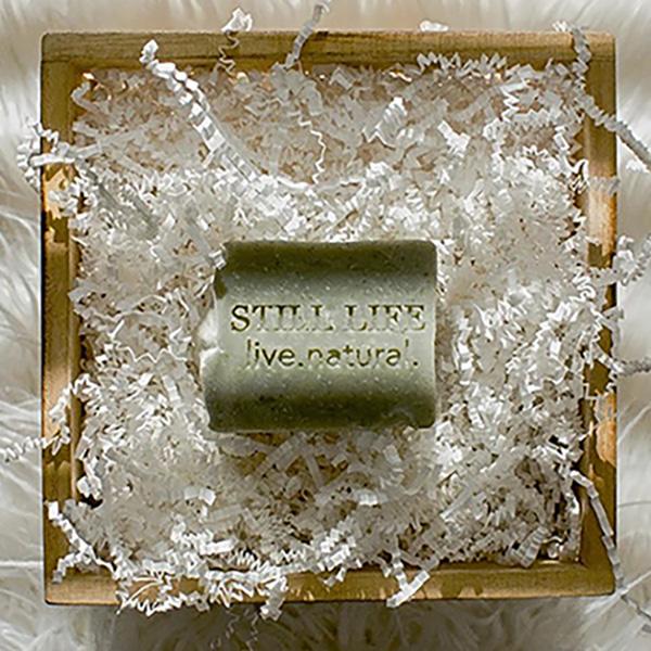 Still Life Cambrian Clay 2