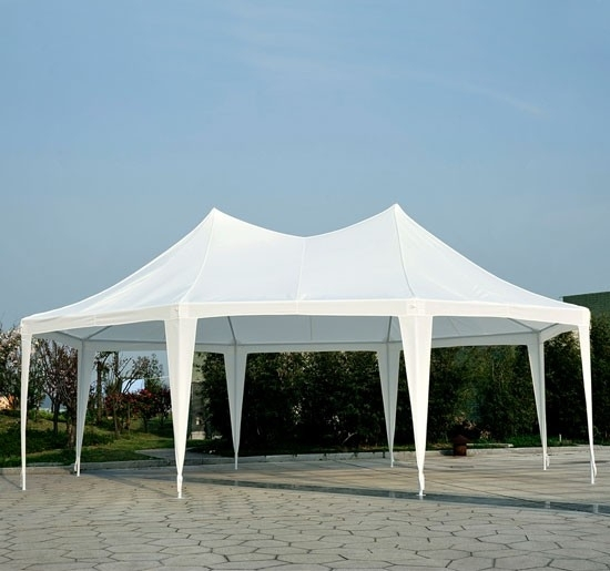 22 X 16 Party Tent Gazebo Canopy