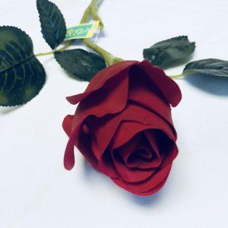 red rose bud stem